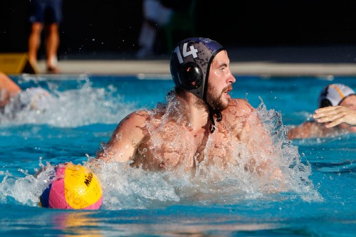 Live Streaming Services Australia – Water Polo Australia